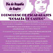I_CONCURSO_ESCAPARATES_ROSALIA_DE_CASTRO[1]